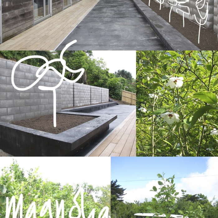 Concrete planter boxes assembly architects for Landscape design jobs new zealand